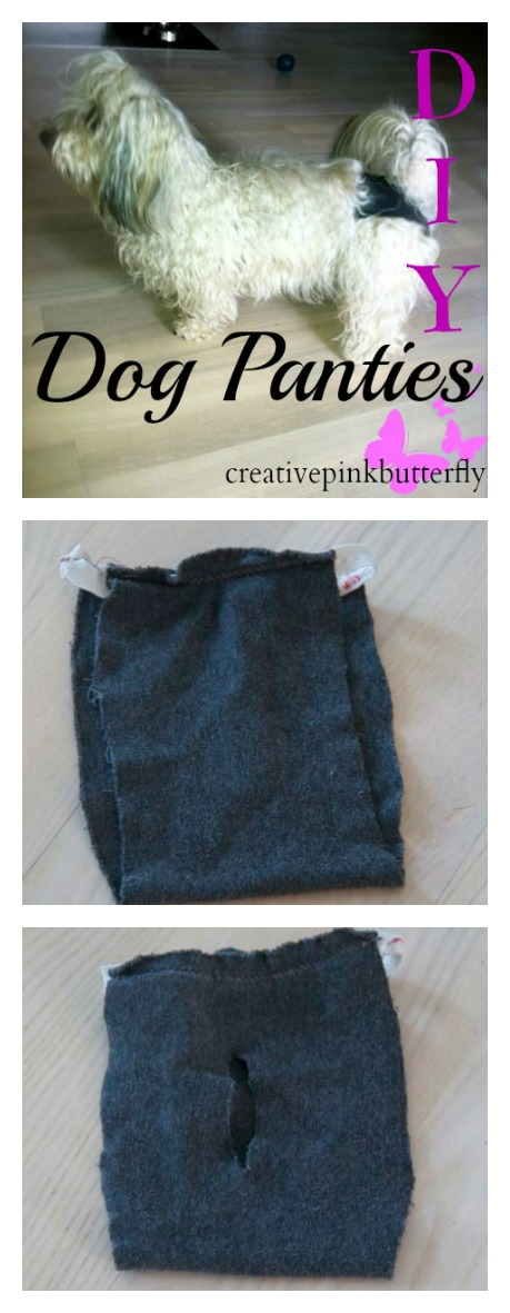 DIY Homemade Dog Panties