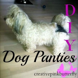 DIY Dog Panties