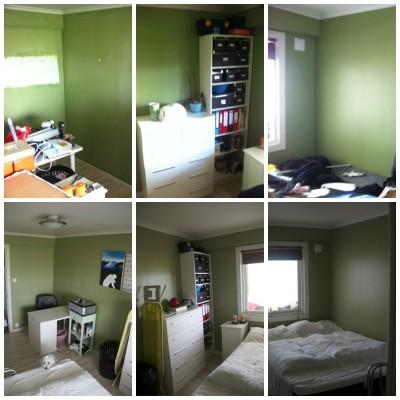 Green Guestroom