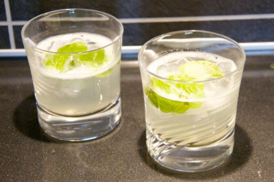 Mint Lemon Vodka - 8