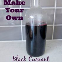 How to Make Your Own Black Currant Juice Concentrate