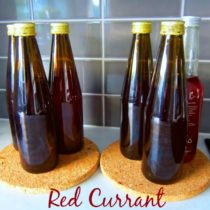 Red Currant Juice Concentrate